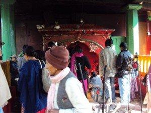 ネパール ダクシンカリ カーリー祭2