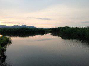 西の湖の反対側