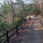 宝ヶ池公園周辺の山道(山間園路)
