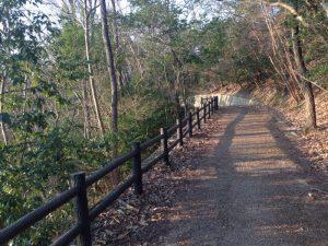 宝ヶ池公園周辺の山道