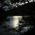 自然あふれる宝ヶ池(宝ヶ池公園)