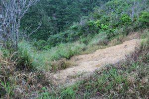 ジュゴンの見える丘への山道の崖