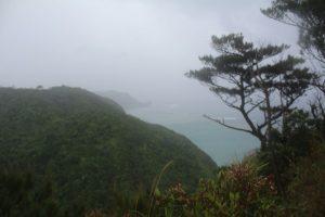 ジュゴンの見える丘まであと一歩
