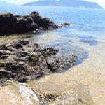 真鍋島 浜辺2