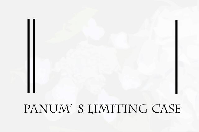 パヌム現象 Panum's limiting case