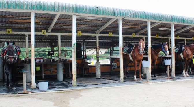 大山乗馬センター