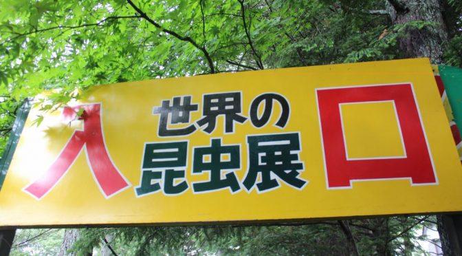 草津熱帯圏 世界の昆虫展