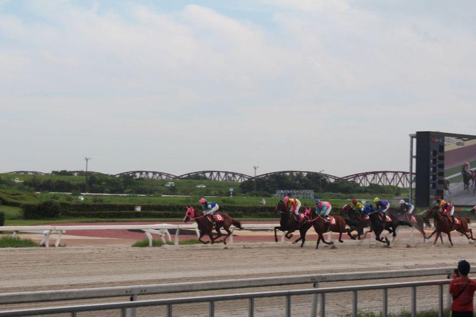 笠松競馬場 レース観戦2