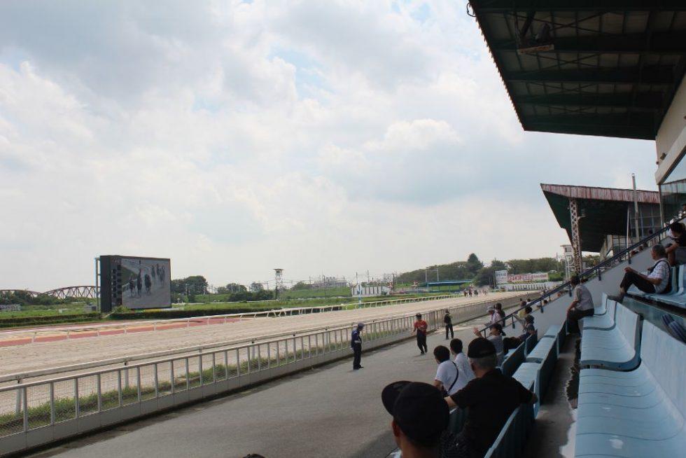 笠松競馬場 レース場