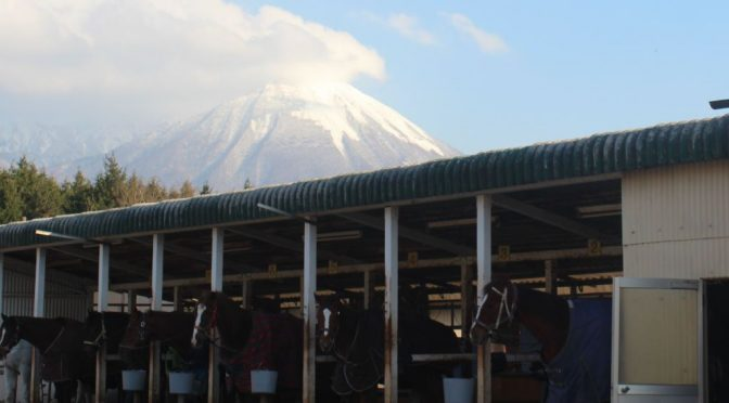 大山乗馬センター 外乗で大山の自然を満喫